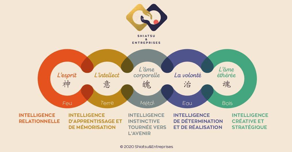 Infographie : les 5 intelligences de la médecine traditionnelle chinoise au service de l'intelligence au travail par l'équipe de Shiatsu & Entreprises.
